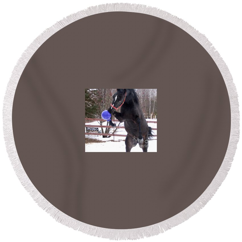 Horse Round Beach Towel featuring the photograph Horse Playing Ball by Line Gagne