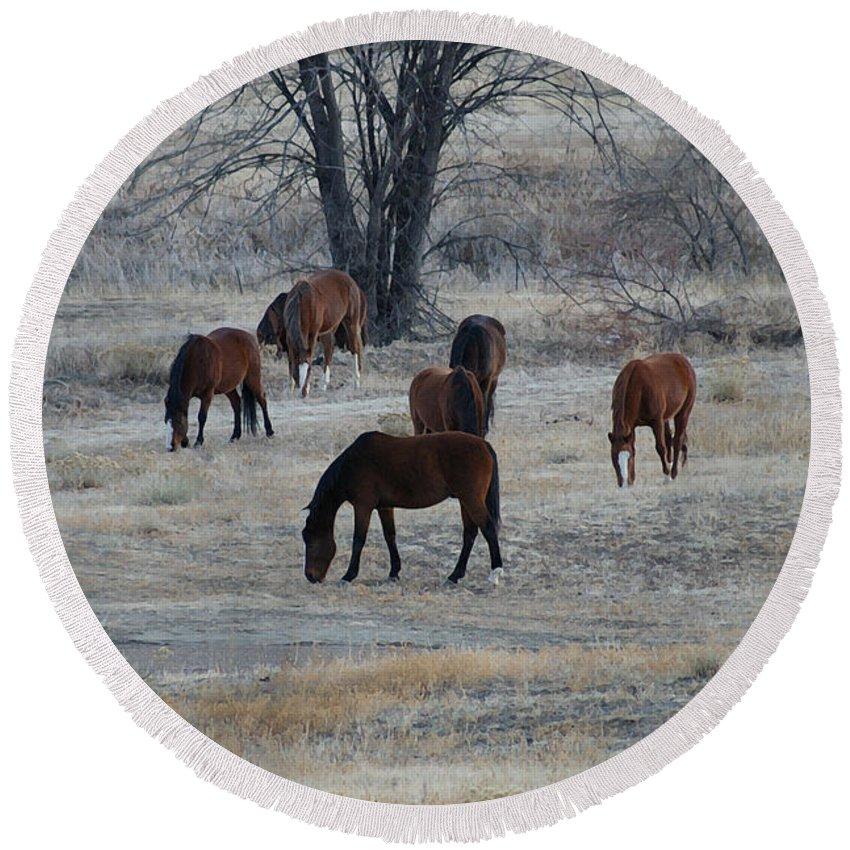Fields Round Beach Towel featuring the digital art Horses by Ernie Echols