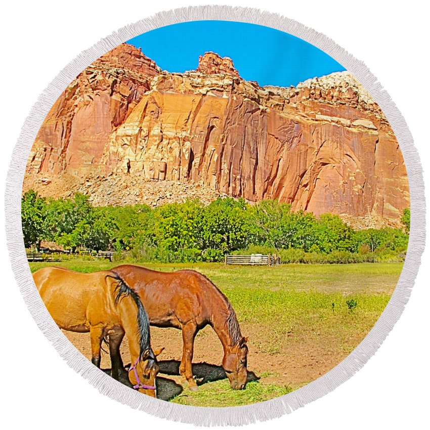 Horses On The Gifford Farm In Fruita In Capitol Reef National Park Round Beach Towel featuring the photograph Horses On The Gifford Farm In Fruita In Capitol Reef National Park-utah by Ruth Hager