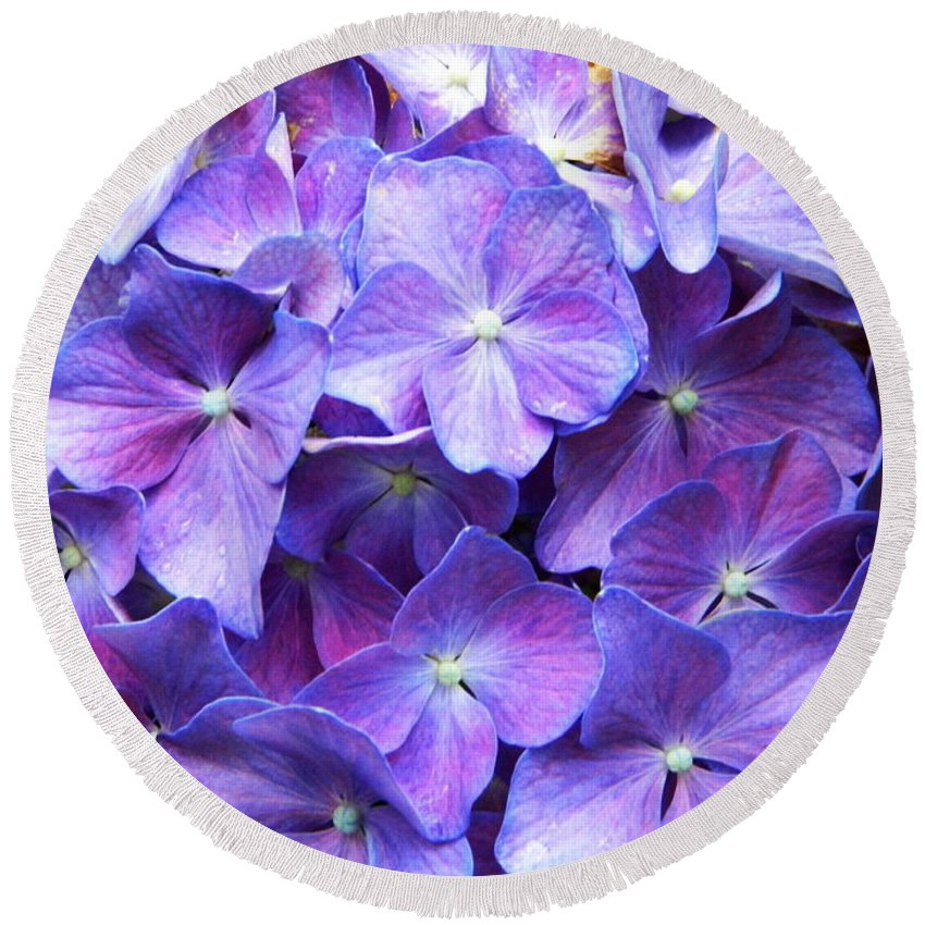 Flower Round Beach Towel featuring the photograph Hydrangeas by Andrea Anderegg