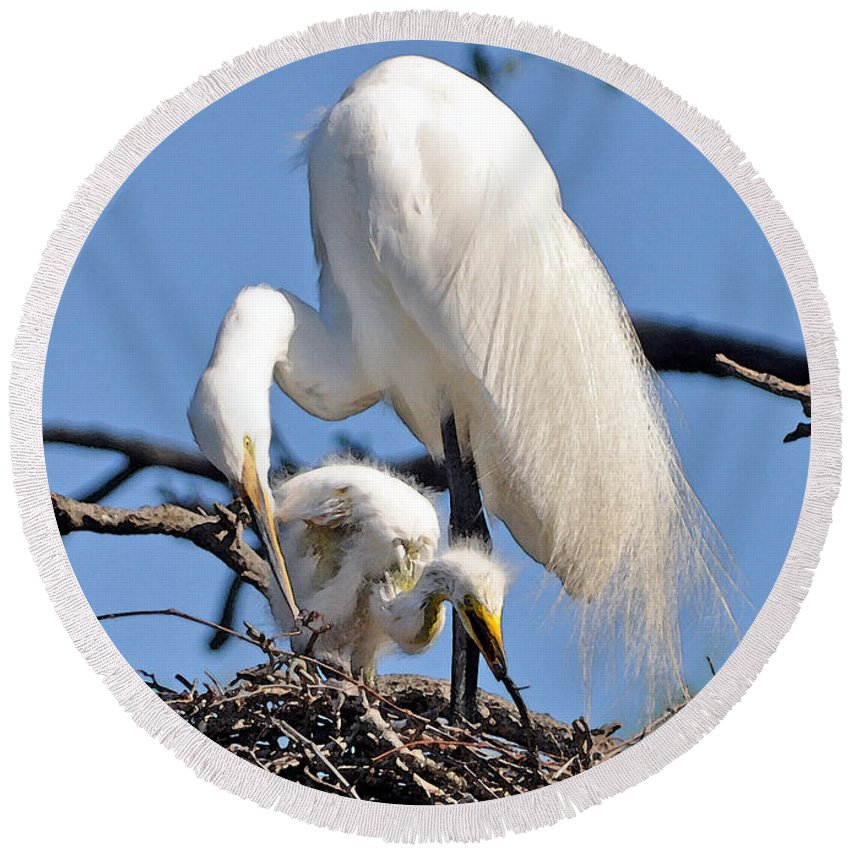 Egret Round Beach Towel featuring the photograph I Do It Like My Mama by Lydia Holly