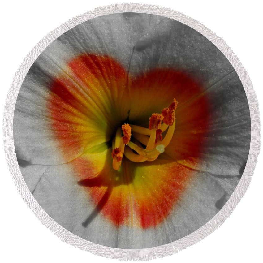 Nature Round Beach Towel featuring the photograph I Heart Flowers by Janice Westerberg