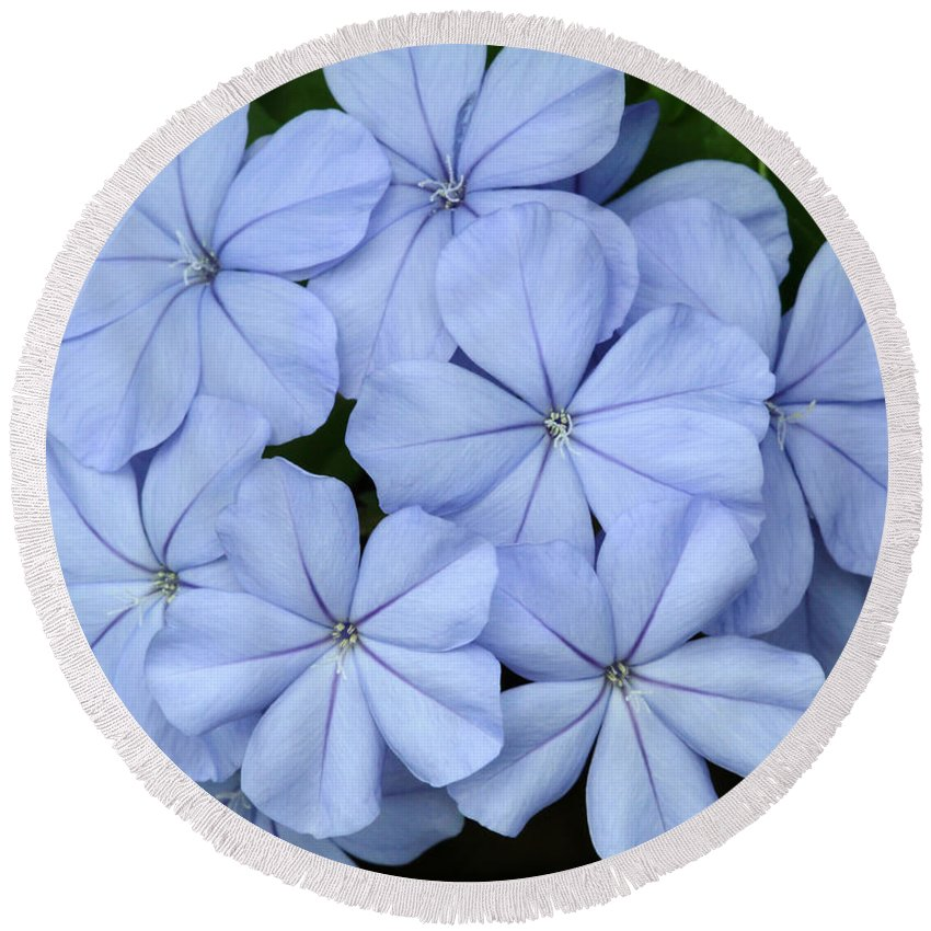 Macro Round Beach Towel featuring the photograph I Love Blue Flowers by Sabrina L Ryan