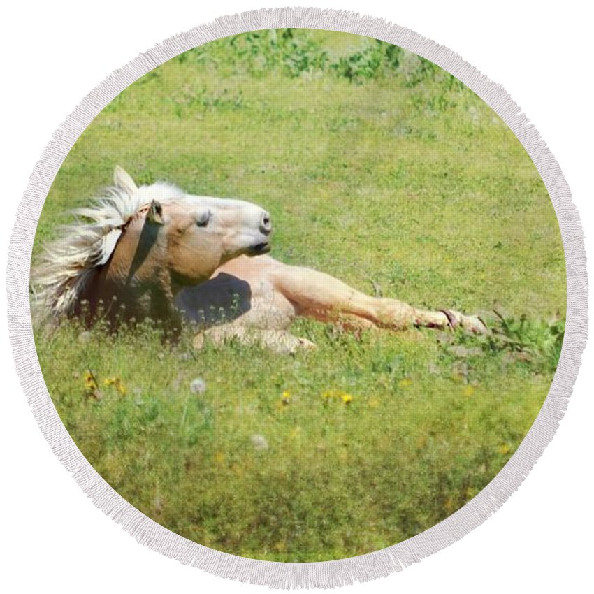 Horse Relaxing Round Beach Towel featuring the photograph I Need A Tan Horse by Peggy Franz