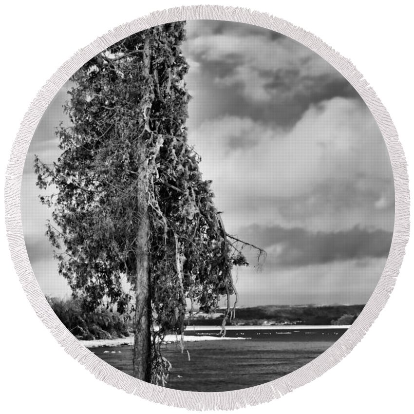 Ice Round Beach Towel featuring the photograph Ice Coated Tree by Louise Heusinkveld