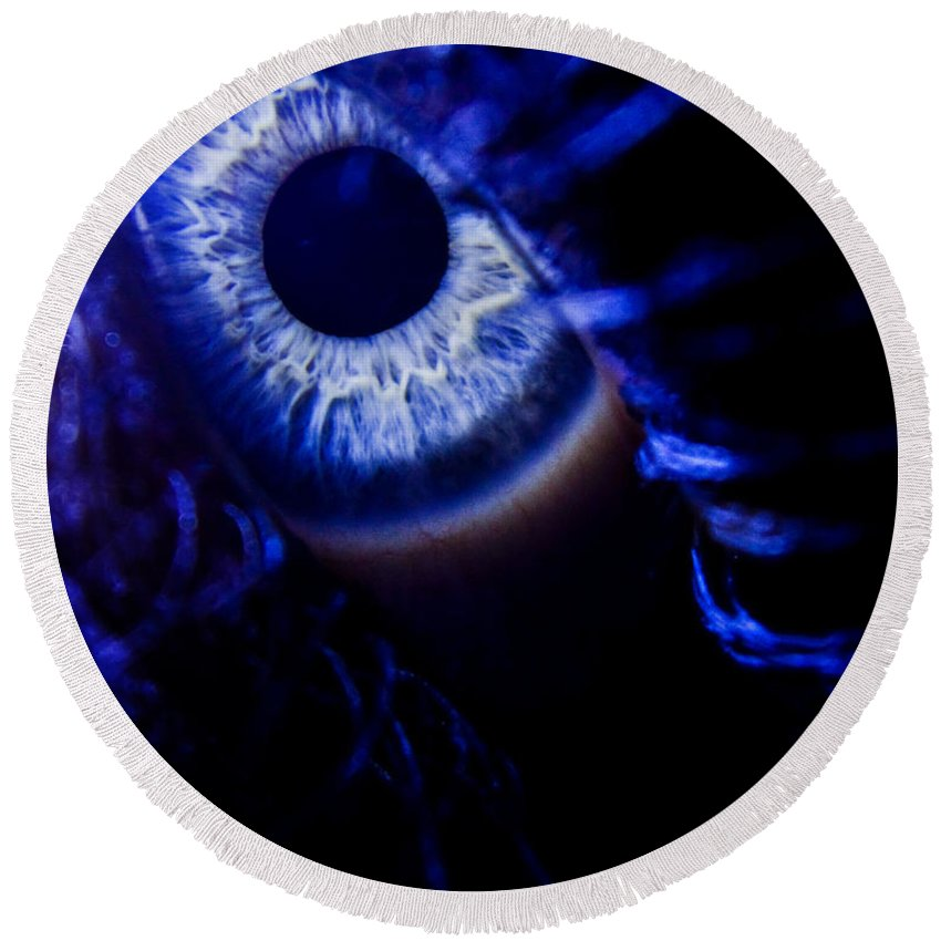 Eye Round Beach Towel featuring the photograph Ice Eye by Andrea Goodrich