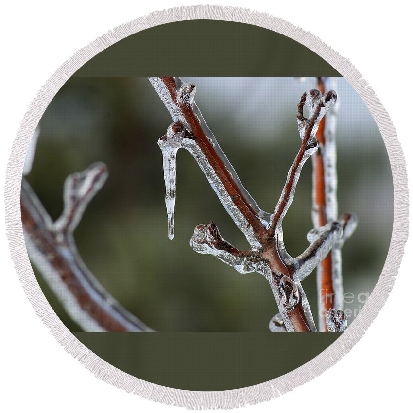 Ice Round Beach Towel featuring the photograph Icy Branch-7463 by Gary Gingrich Galleries