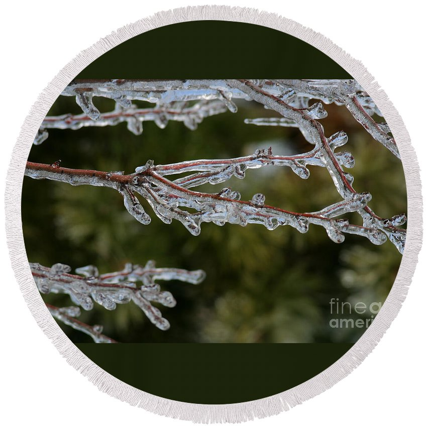 Ice Round Beach Towel featuring the photograph Icy Branch-7482 by Gary Gingrich Galleries