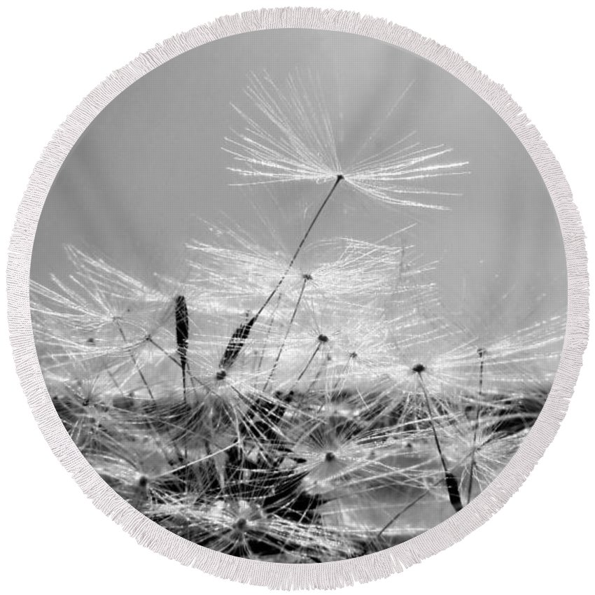 Dandelion Round Beach Towel featuring the photograph If I Had One Wish by Art Dingo