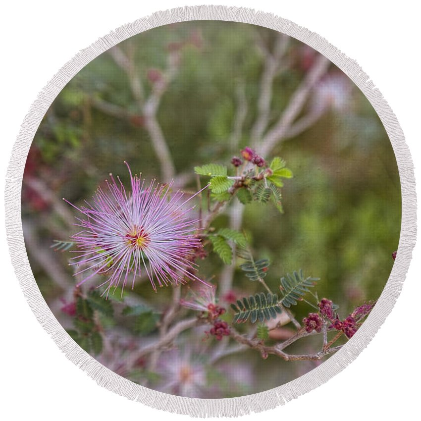 Pink Round Beach Towel featuring the photograph I'm Light As A Feather by Lucinda Walter