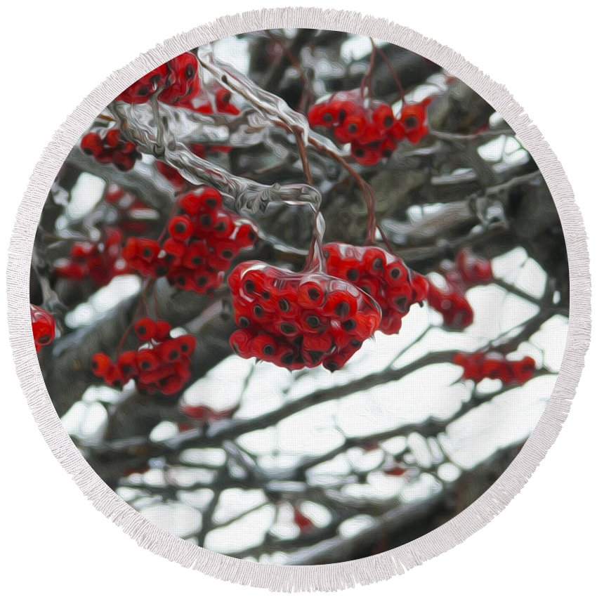 Red Berries Round Beach Towel featuring the photograph Incased Berries by Tracy Winter