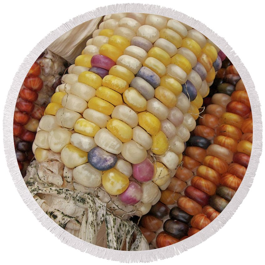 Indian Corn Round Beach Towel featuring the photograph Indian Corn by Ann Horn