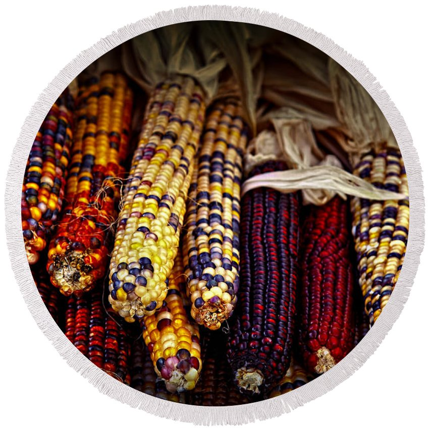 Corn Round Beach Towel featuring the photograph Indian Corn by Elena Elisseeva