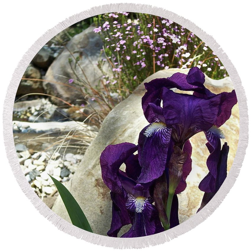 Flowers Round Beach Towel featuring the photograph Iris 14 by Pamela Cooper
