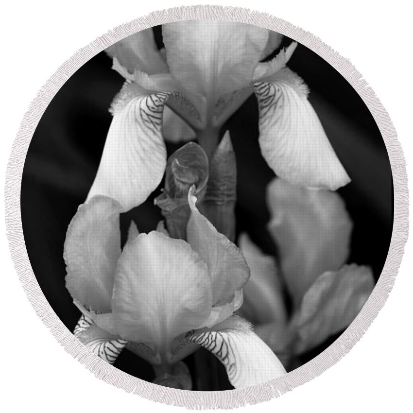 Iris Round Beach Towel featuring the photograph Irises In Black And White by Jeanette C Landstrom