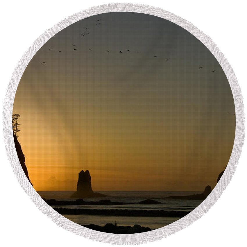 James Island Round Beach Towel featuring the photograph James Island Sunset And Birds by Greg Reed