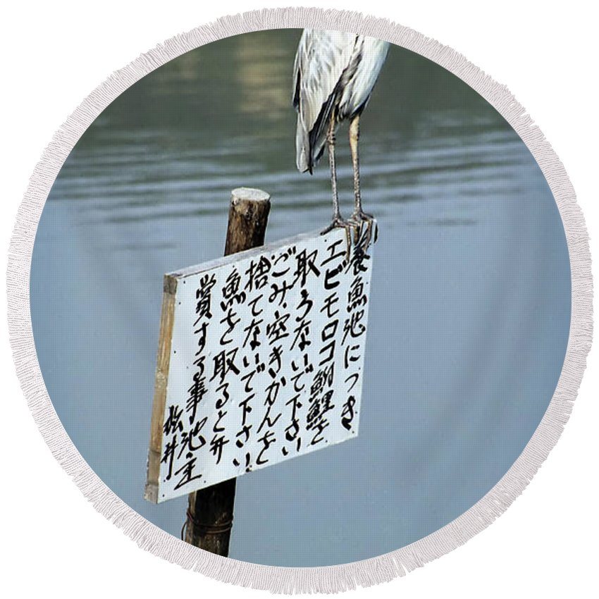 Japan Round Beach Towel featuring the photograph Japanese Waterfowl - Kyoto Japan by Daniel Hagerman