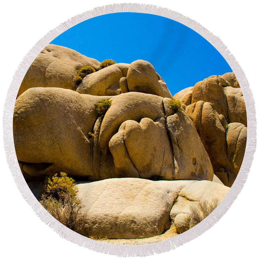 Joshua Tree Round Beach Towel featuring the photograph Joshua Tree 29 by Alex Snay