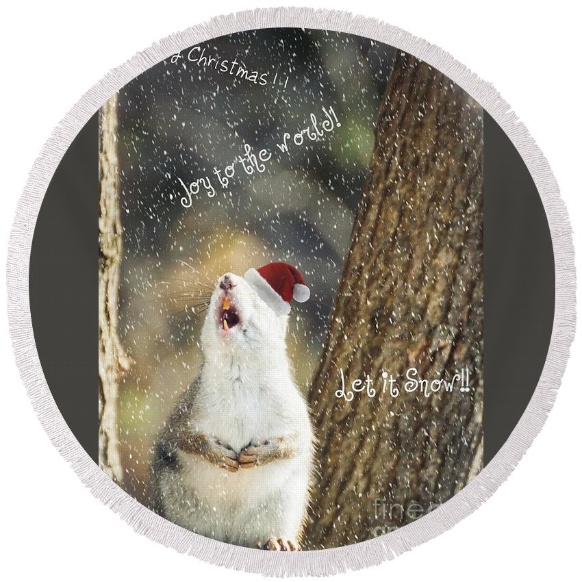 Squirrel Round Beach Towel featuring the photograph Joy To The World by Cheryl Baxter