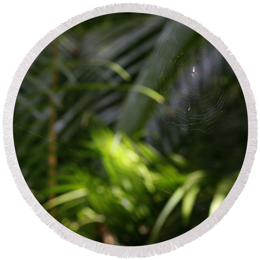 Tropical Jungle Round Beach Towel featuring the photograph Jungle Web by Les Cunliffe