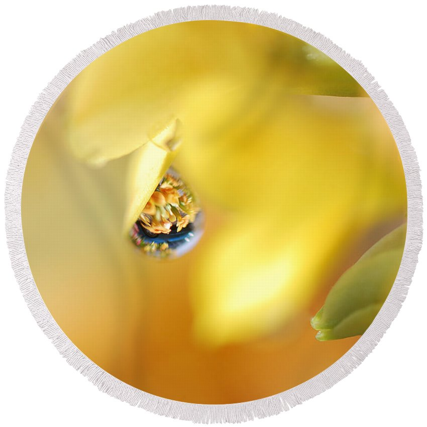 Water Drops Round Beach Towel featuring the photograph Just A Drop Of Spring by Susan Capuano