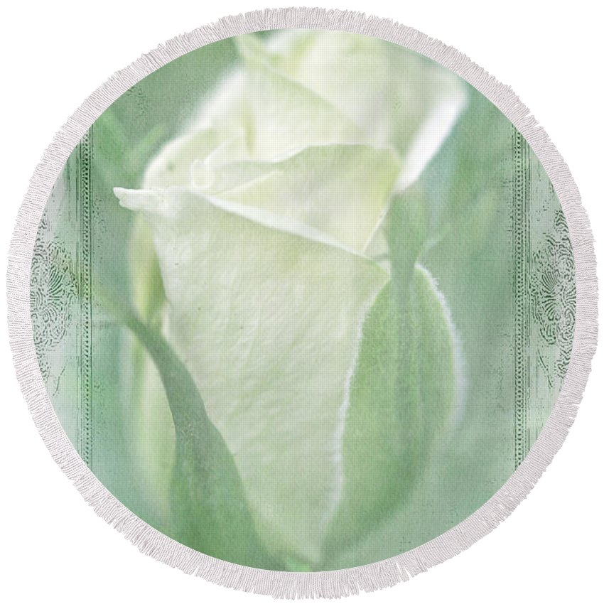 Rose Round Beach Towel featuring the photograph Just Beginning by Mother Nature