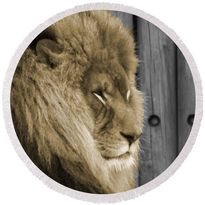 Lion Round Beach Towel featuring the photograph King In Sepia by Phillip W Strunk