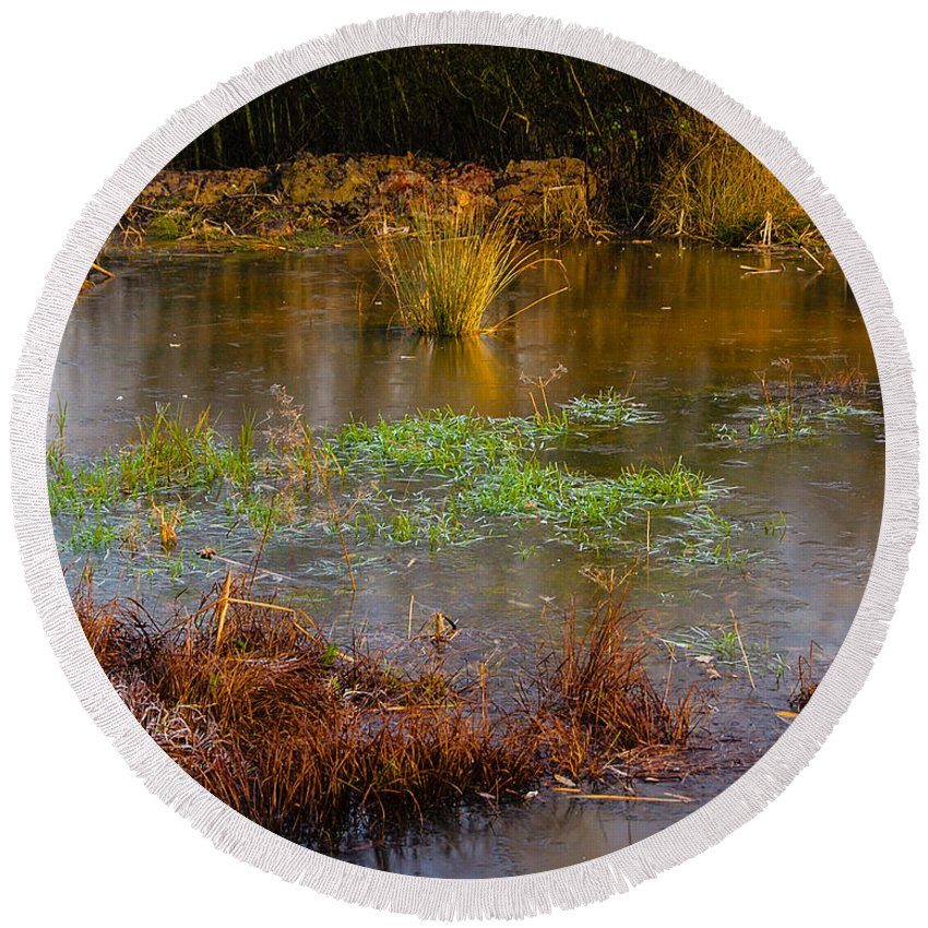 Brown Round Beach Towel featuring the photograph Kintbury Newt Ponds by Mark Llewellyn