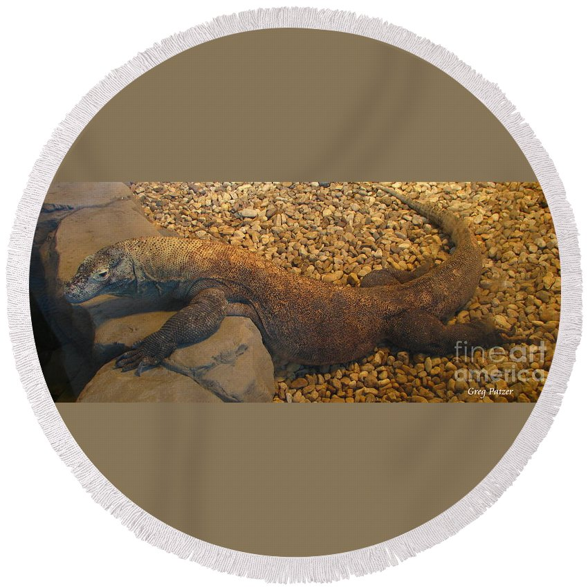 Art For The Wall...patzer Photography Round Beach Towel featuring the photograph Komodo by Greg Patzer