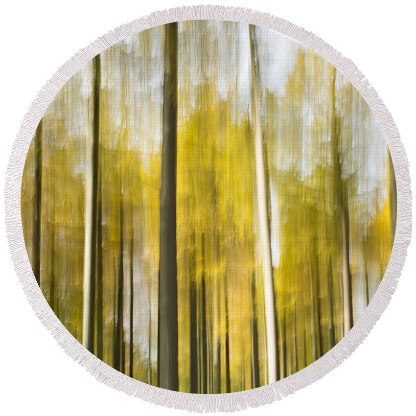 Abstract Round Beach Towel featuring the photograph Larch Grove Blurred by Anne Gilbert