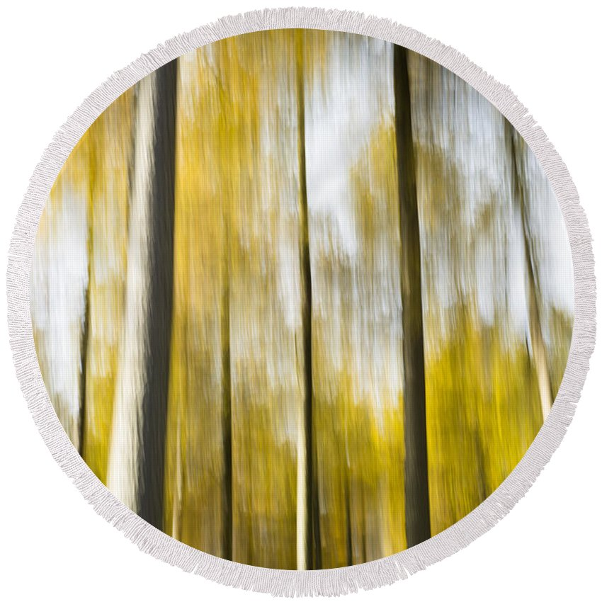 Abstract Round Beach Towel featuring the photograph Larch In Abstract by Anne Gilbert