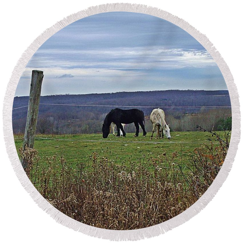 Horses Round Beach Towel featuring the photograph Last Grazing by Christian Mattison