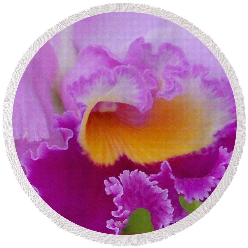 Orchid Round Beach Towel featuring the photograph Lavender Orchid by Aimee L Maher ALM GALLERY