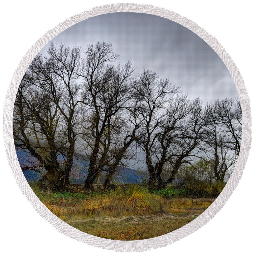 Aging Round Beach Towel featuring the photograph Leafless Trees by Ivan Slosar