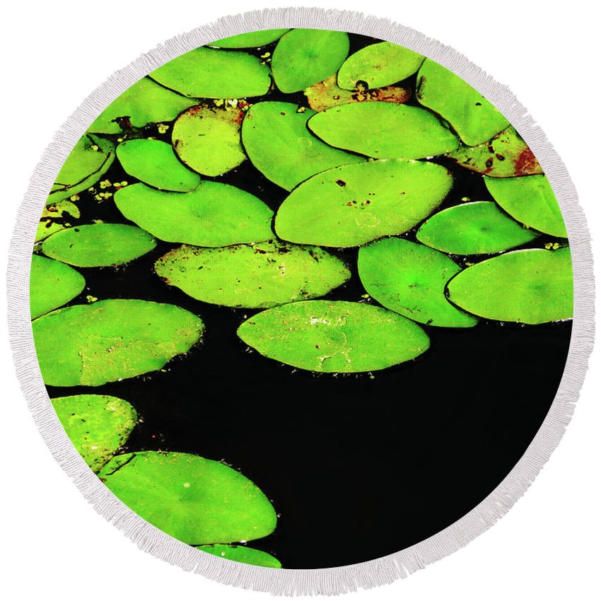 Swamp Round Beach Towel featuring the photograph Leafy Swamp by Ann Horn