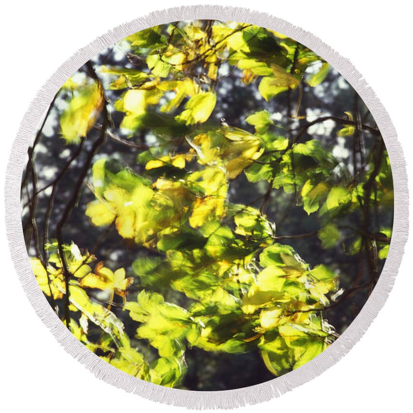 Leaves Round Beach Towel featuring the photograph Leaves Blowing by Jon Delorme