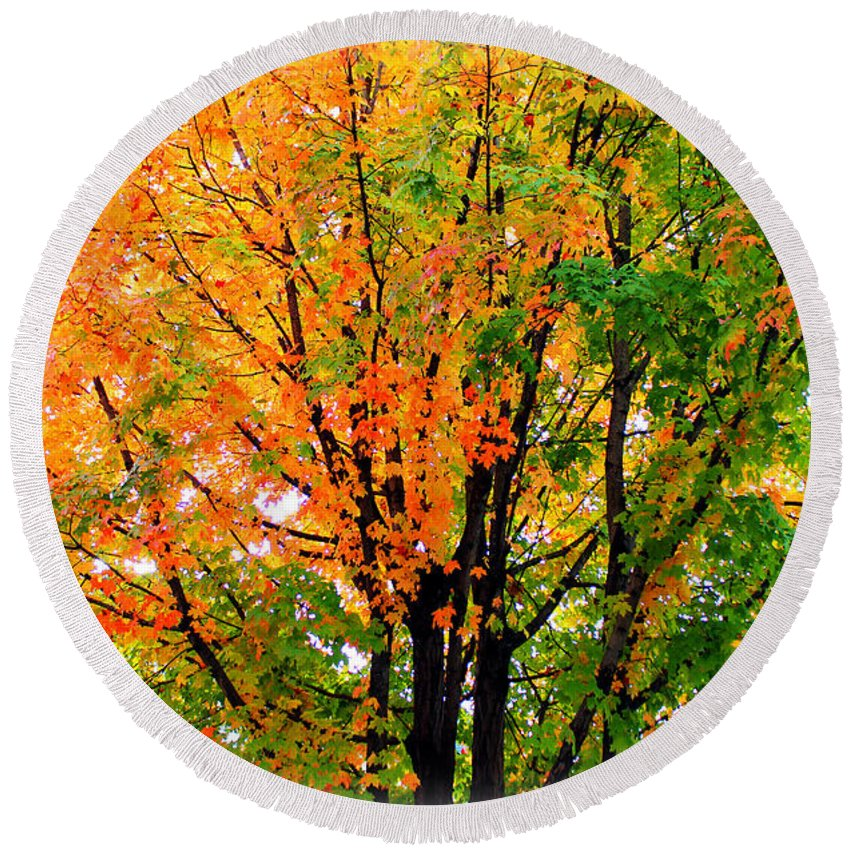 Tree Round Beach Towel featuring the photograph Leaves Changing Colors by Cynthia Guinn