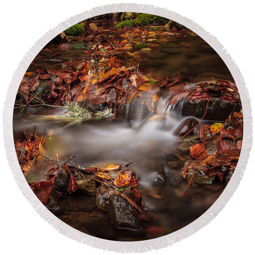 Fall Round Beach Towel featuring the photograph Leaves In The Creek by Mike Penney