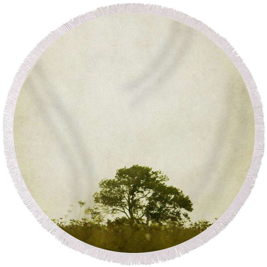 Tree Round Beach Towel featuring the photograph Left Alone In A Pasture by Margie Hurwich