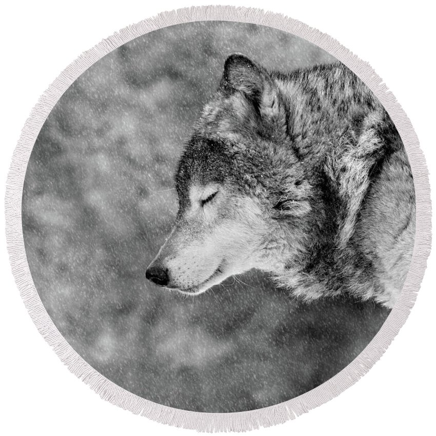 Wolves Round Beach Towels