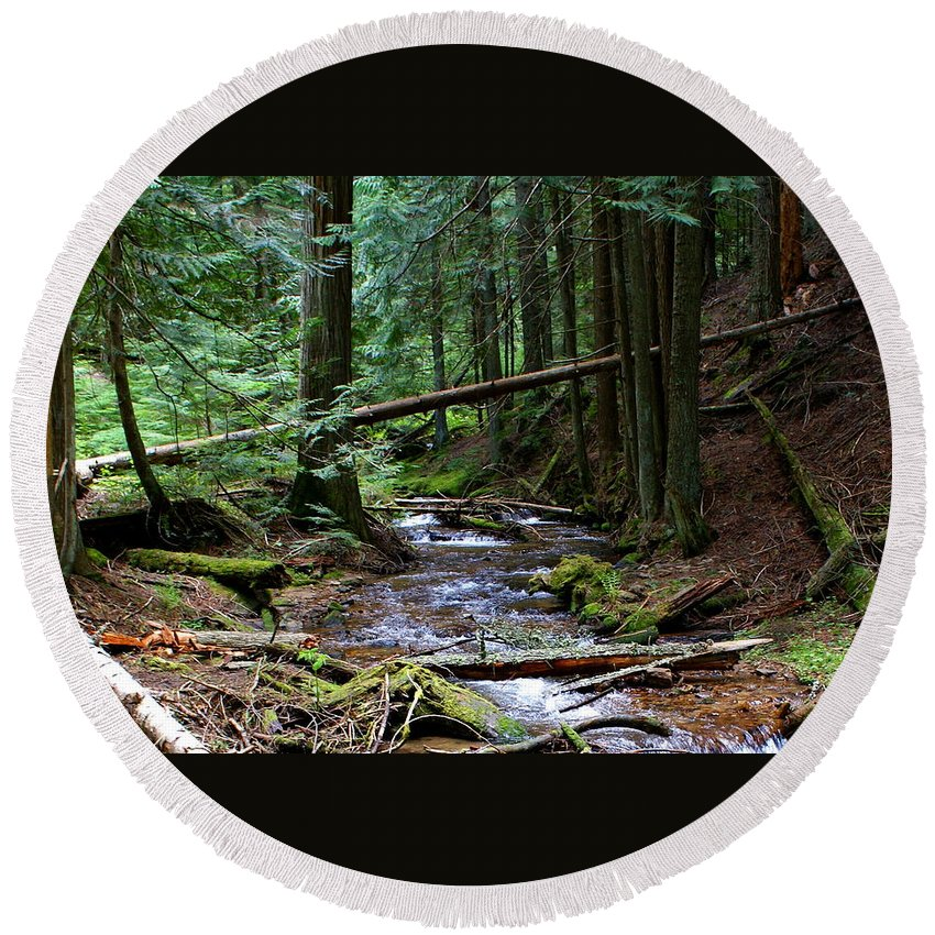 Nature Round Beach Towel featuring the photograph Liberty Creek 2014 #5 by Ben Upham III
