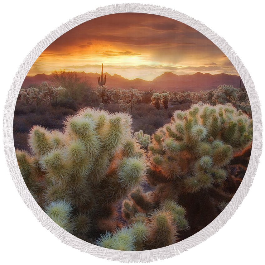 Superstition Mountains Round Beach Towel featuring the photograph Light Catchers by Peter Coskun