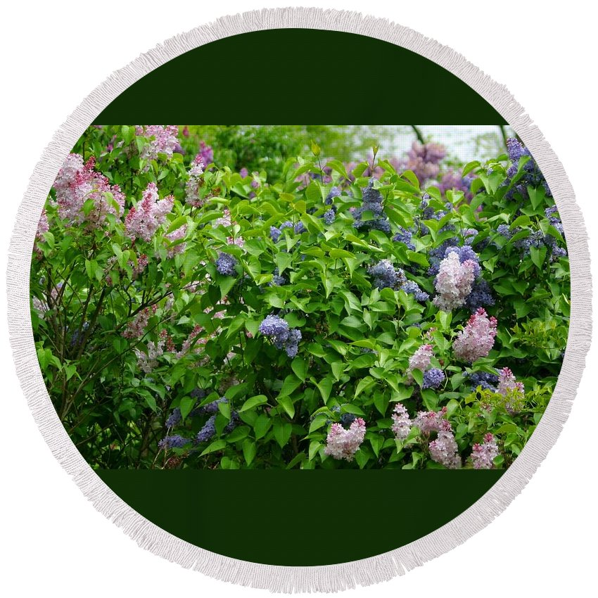 Lilacs Round Beach Towel featuring the photograph Lilac Heaven by Living Color Photography Lorraine Lynch
