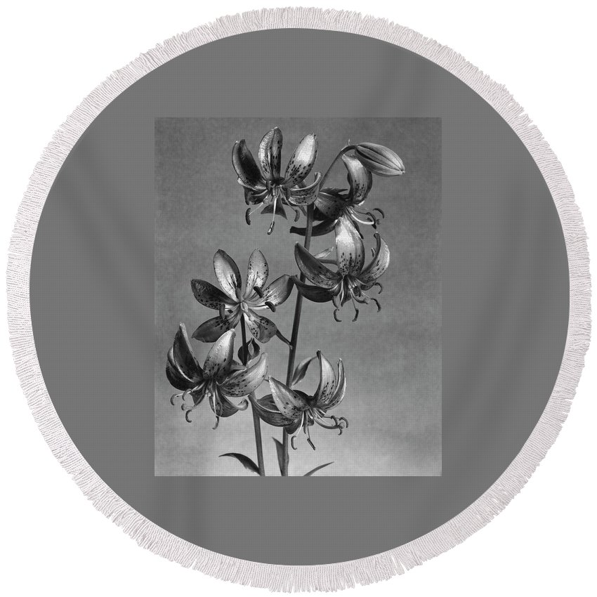 Flowers Round Beach Towel featuring the photograph Lilium Hansonii by J. Horace McFarland
