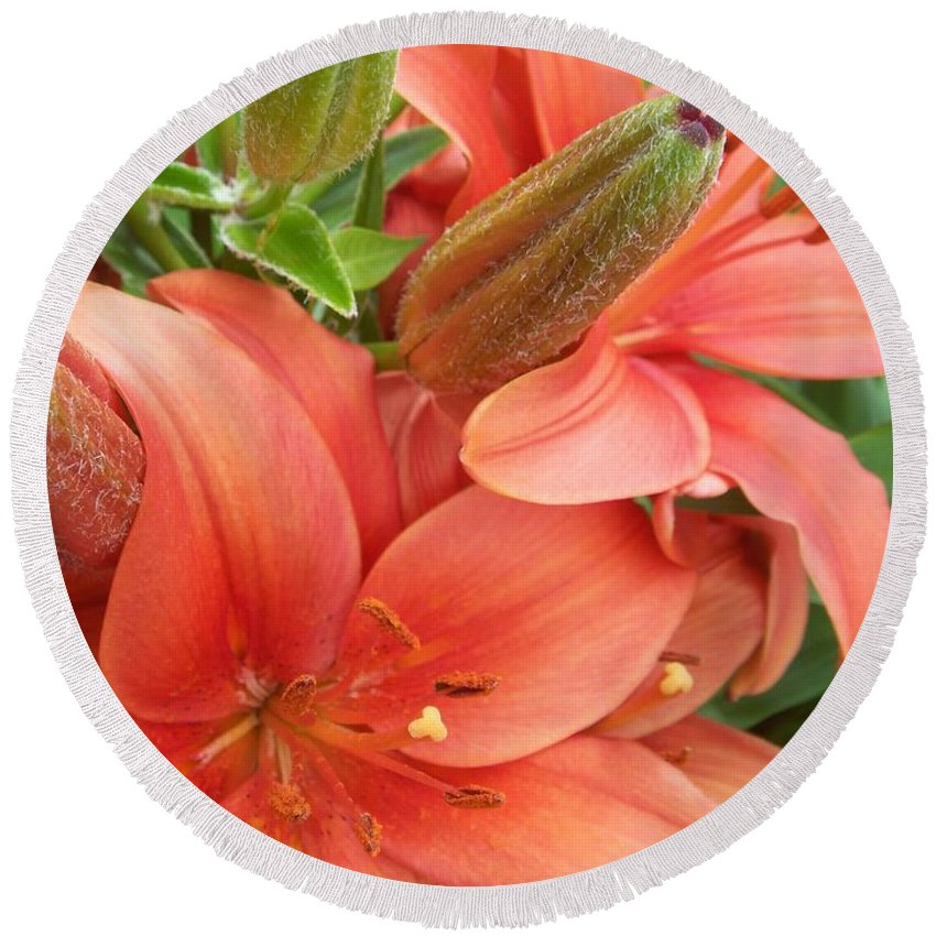 Flower Round Beach Towel featuring the photograph Lillys And Buds 3 by Anita Burgermeister