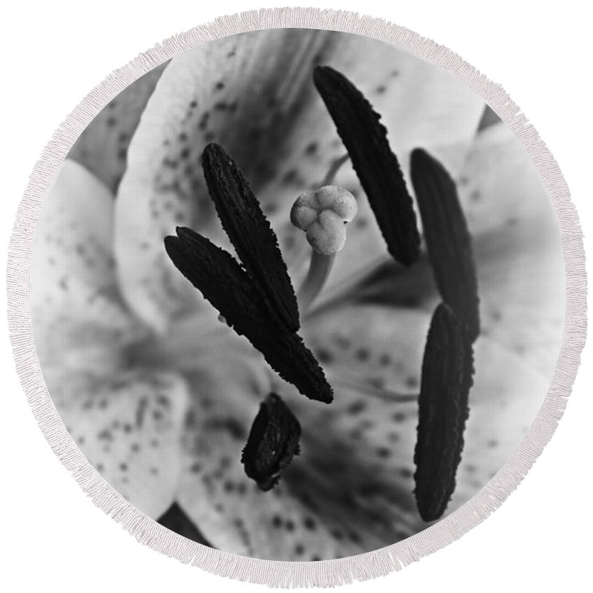 Stargazer Lily Round Beach Towel featuring the photograph Lily by Clare Bevan