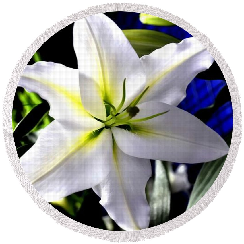 Flower Round Beach Towel featuring the photograph Lily by FL collection
