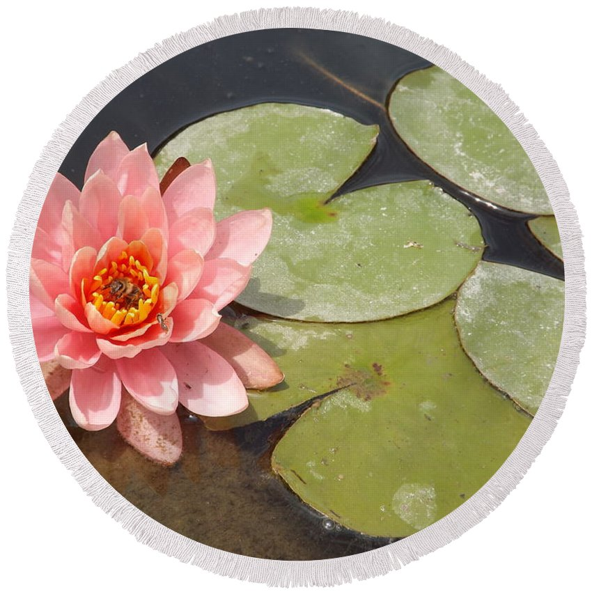 Pink Round Beach Towel featuring the photograph Lily Honey by Caryl J Bohn
