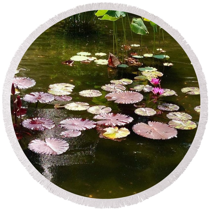 Fountain Round Beach Towel featuring the photograph Lily Pads In The Fountain by Christy Gendalia