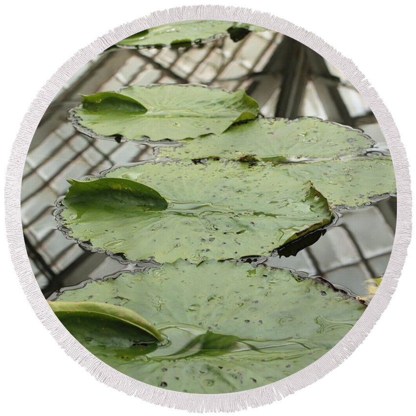 Lily Pads Round Beach Towel featuring the photograph Lily Pads With Reflection Of Conservatory Roof by Carol Groenen